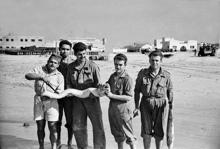 08-07b.- Buena pesca. Merienda asegurada. Foto: Joan Bordas. Villa Bens, 1957