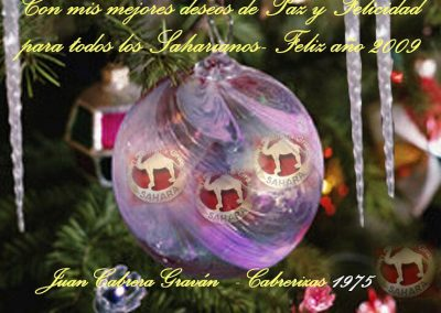 006.- Navidad 2008