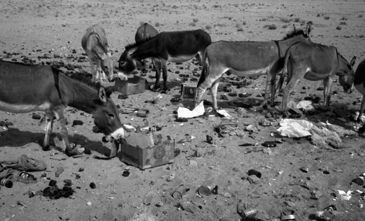 06-07a.- Reciclaje perfecto. Economía sostenible. Foto: Juan Piqueras. Tichla, 1971