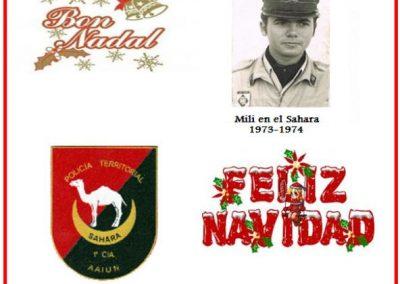 006.- Navidad 2011