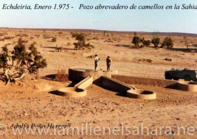 """<a href=""""https://www.lamilienelsahara.net/personal?id=2004"""" target=""""_blank"""" rel=""""noopener noreferrer"""" title="""""""">74126.- Peña Herrera, Adolfo</a>"""