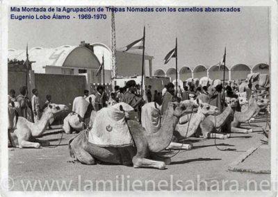 """<a href=""""https://www.lamilienelsahara.net/personal?id=701"""" target=""""_blank"""" rel=""""noopener noreferrer"""" title="""""""">69025.- Lobo Álamo, Eugenio</a>"""