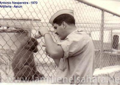 "<a href=""https://www.lamilienelsahara.net/personal?id=733"" target=""_blank"" rel=""noopener noreferrer"" title="""">69047.- Nespereira Gómez, Antonio</a>"