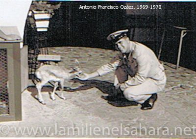 "<a href=""https://www.lamilienelsahara.net/personal?id=736"" target=""_blank"" rel=""noopener noreferrer"" title="""">69050.- Ozáez López, Antonio Francisco</a>"