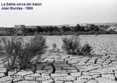 113.- El Aaiún, La Sahia.