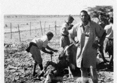 020.- Echdeiría, Matanza de camello.
