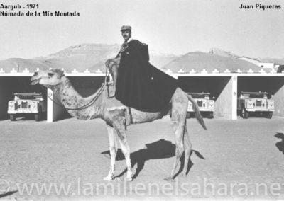 035.- Aargub, Nómada de la Mia Montada.
