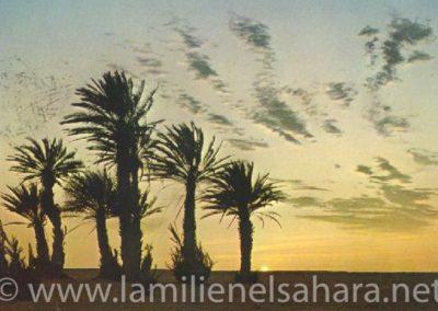 012.- Smara, Oasis, Puesta de Sol.